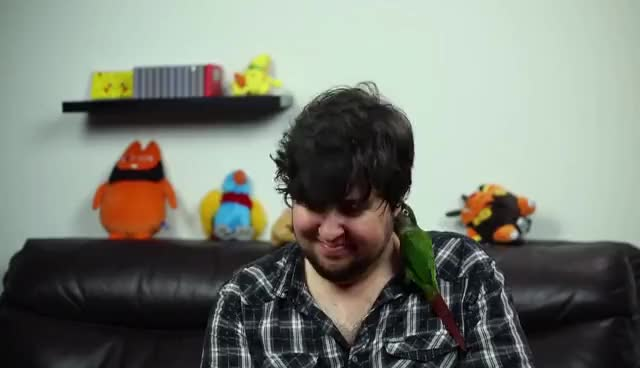 Watch Jontron quits GIF on Gfycat. Discover more JonTron, jontronshow, life, quits GIFs on Gfycat