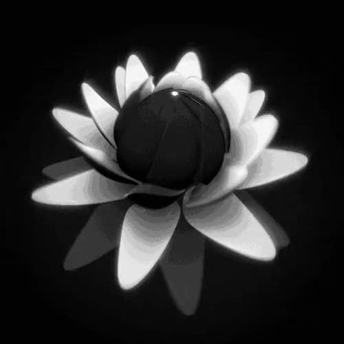 Watch and share Bloom [A] GIFs on Gfycat