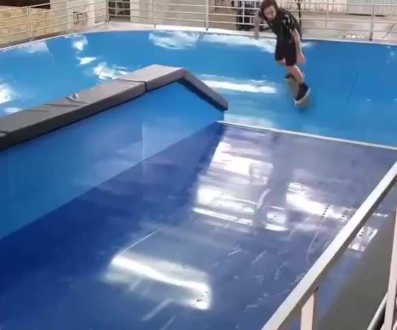 Watch and share Surf Without Waves-3aq5m4p06bz11 GIFs on Gfycat