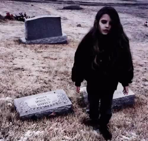 Watch and share Crystal Castles GIFs and Tecumseh GIFs on Gfycat