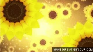 Watch Cure Sunshine GIF on Gfycat. Discover more related GIFs on Gfycat