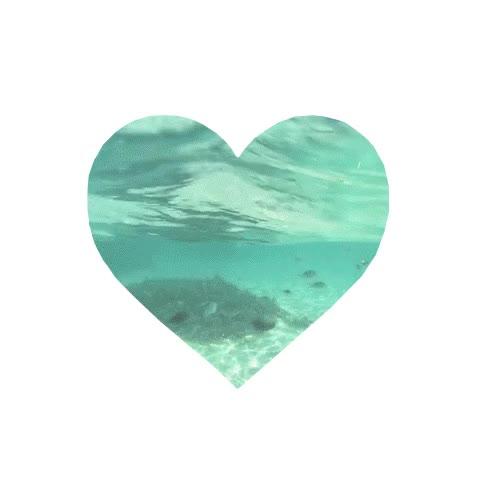 Watch and share Beautiful Blue Fish Favim Com GIFs on Gfycat