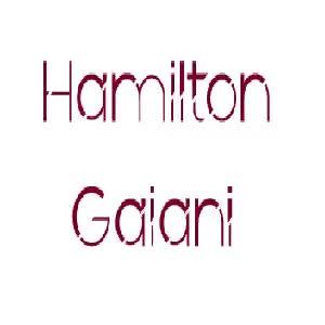 Watch and share Hamilton Gaiani GIFs by Hamilton Gaiani on Gfycat