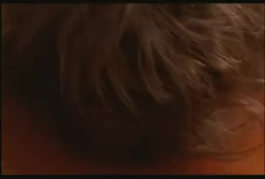 Watch Flypaper facial GIF on Gfycat. Discover more Brooke Theiss, bug, nightmare on elm street GIFs on Gfycat