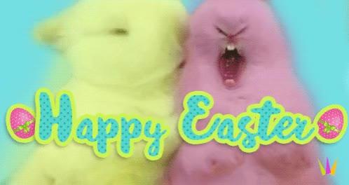 Watch rabbit GIF on Gfycat. Discover more rabbit GIFs on Gfycat