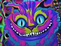 Watch and share Cheshirecat Trippy Psychedelic Col GIFs on Gfycat