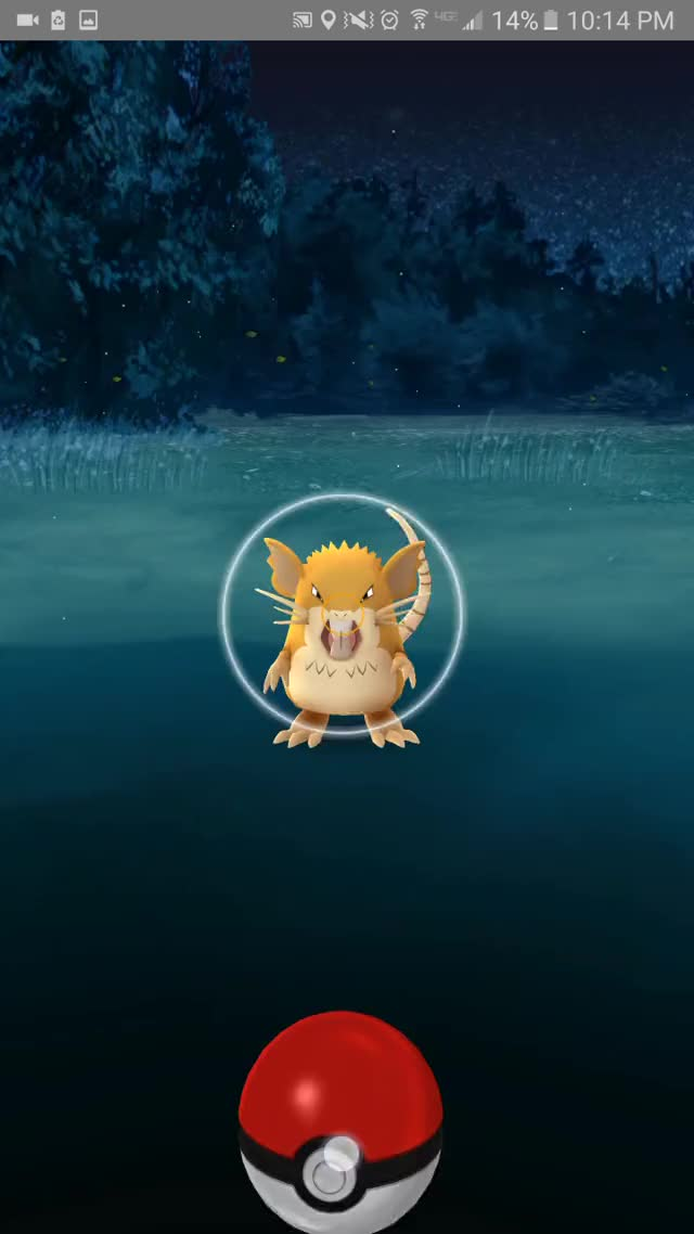 Watch and share Pokemongo GIFs by xcrowv on Gfycat