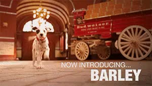 Watch and share Budweiser GIFs and Dalmatian GIFs on Gfycat