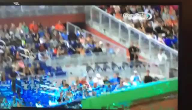 Watch and share Marlins GIFs and Miami GIFs on Gfycat