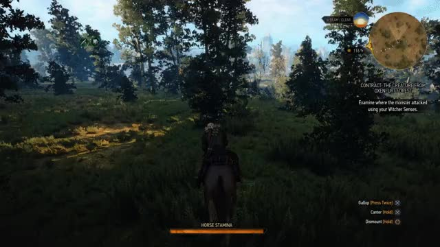 Watch and share The Witcher 3 Horse GIFs on Gfycat