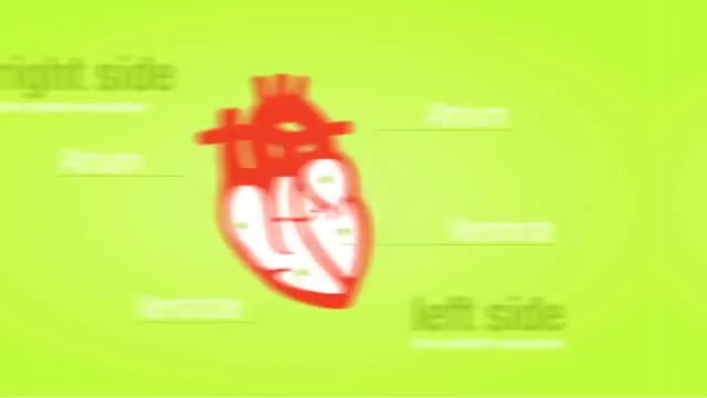 Watch and share Ventricles GIFs and Ventricle GIFs on Gfycat