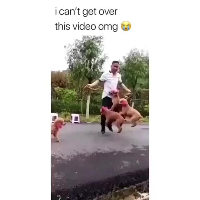 Watch and share Jump Rope GIFs by Nomorefoxgiven on Gfycat
