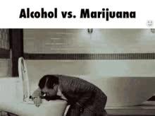 Watch and share Alcohol Marijuana GIFs on Gfycat