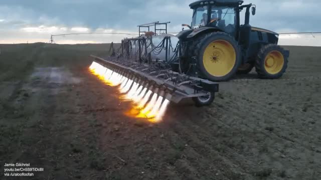 Watch and share Flaming Weeds In Organic Farming GIFs on Gfycat
