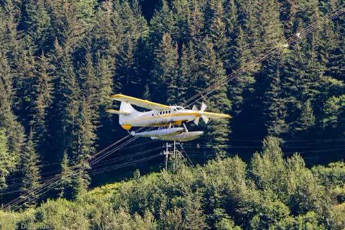 Watch and share Southeast Alaska GIFs and Gabe Donohoe GIFs on Gfycat