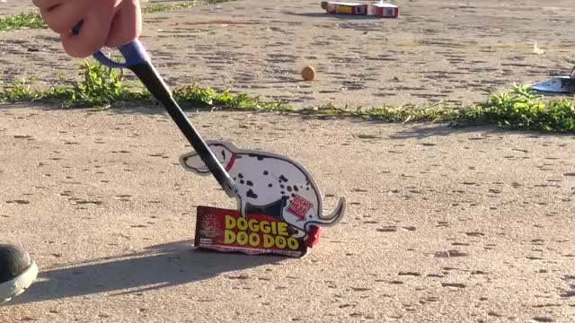 Watch and share Doggie DooDoo Firework GIFs by umkra on Gfycat
