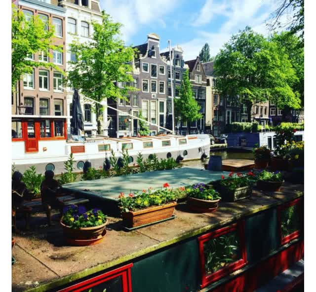 Watch and share Private Canal Tour Amsterdam GIFs by Amsterdam Experiences on Gfycat