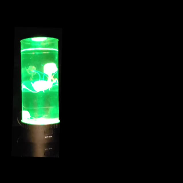 JellyFish JAM GIF | Find, Make & Share Gfycat GIFs