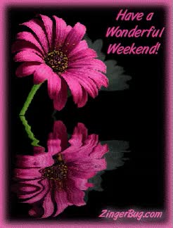 Watch and share Wonderful Weekend Reflecting Flower - Animation Newest Pictures Animated GIFs on Gfycat