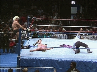 ProWrestlingGIFs, prowrestlinggifs, Ric Flair doing his best lucha impression (reddit) GIFs