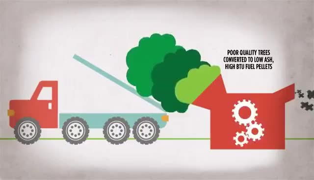 Watch and share How Does A Biomass Fuel Plant Work? - Catskill Forest Association, NY GIFs on Gfycat