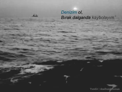 Watch and share Dalga GIFs and Deniz GIFs on Gfycat