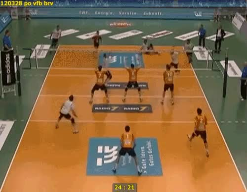 Watch and share Volleyball Dog GIFs on Gfycat