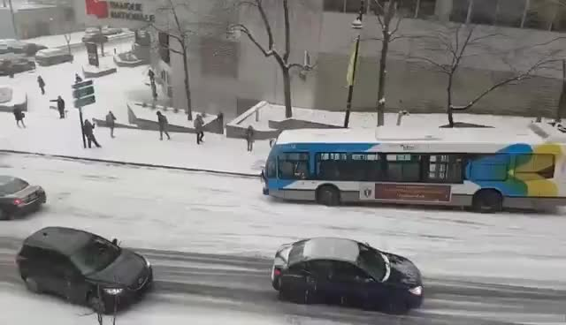 Montreal Accidents GIFs
