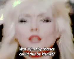Watch dreaming GIF on Gfycat. Discover more **, Blondie, Debbie Harry, Deborah Harry, GROSS GROSS GROSS, live, shit.gif GIFs on Gfycat