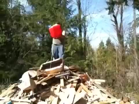Watch and share What Could Go Wrong GIFs and Wcgw GIFs by nyctilaur on Gfycat