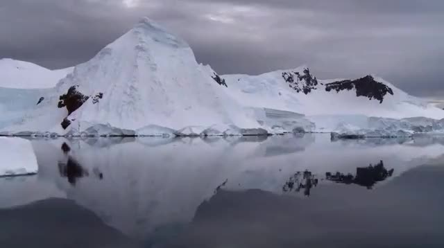 Watch and share Antarctic Peninsula (reddit) GIFs by holdenwook on Gfycat