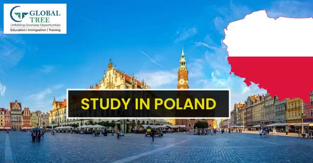 Watch and share Study In Poland GIFs by Study Abroad & Immigration on Gfycat