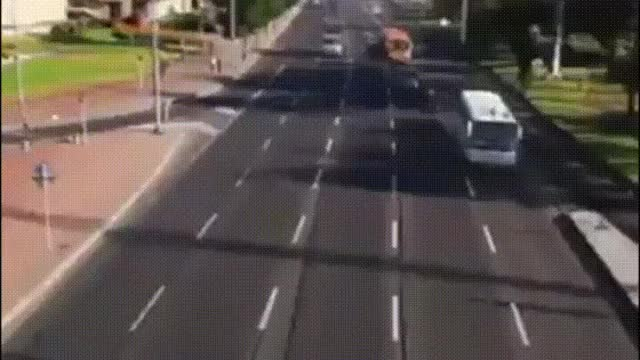 Watch and share Real Life Frogger GIFs on Gfycat