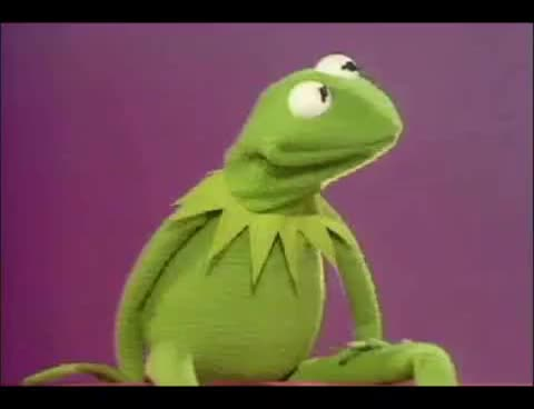 Watch and share Miss Piggy Hits Kermit GIFs on Gfycat