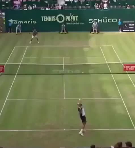 Watch and share Tennis GIFs and Funny GIFs on Gfycat
