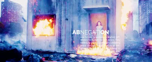 Watch SnarlingTameAustralianshelduck GIF on Gfycat. Discover more abnegation, amity, candor, dauntless, divergent, divergentedit, erudite, factions, im trying to learn how to gif, wahhh GIFs on Gfycat