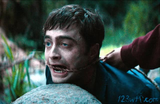Watch this GIF on Gfycat. Discover more daniel radcliffe GIFs on Gfycat