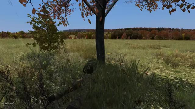 Watch and share Dashboard GIFs and Dayz GIFs on Gfycat