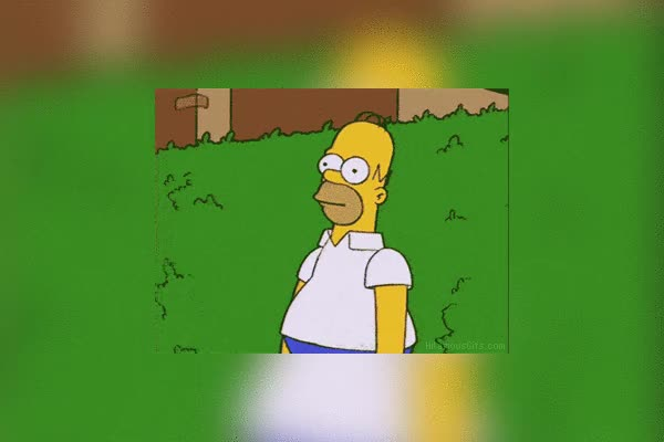 Watch and share Homer Simpson Bush Gif Gif GIFs on Gfycat