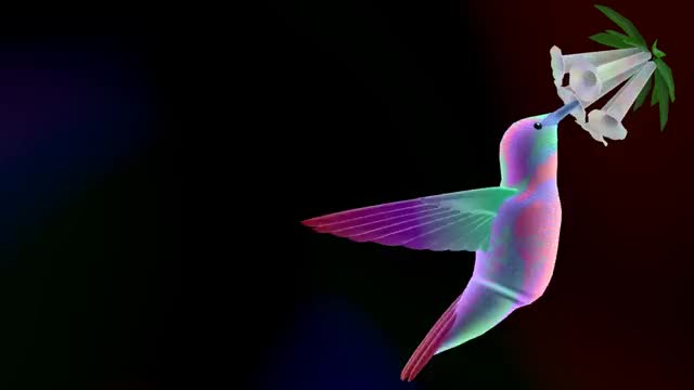 Watch Hummingbird GIF by @private_citizen on Gfycat. Discover more related GIFs on Gfycat