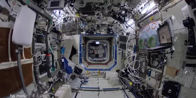 Watch Walk on the International Space Station GIF by Ievgen Marchuk (@ievgenmarchuk) on Gfycat. Discover more InternationalSpaceStation, space, walk GIFs on Gfycat