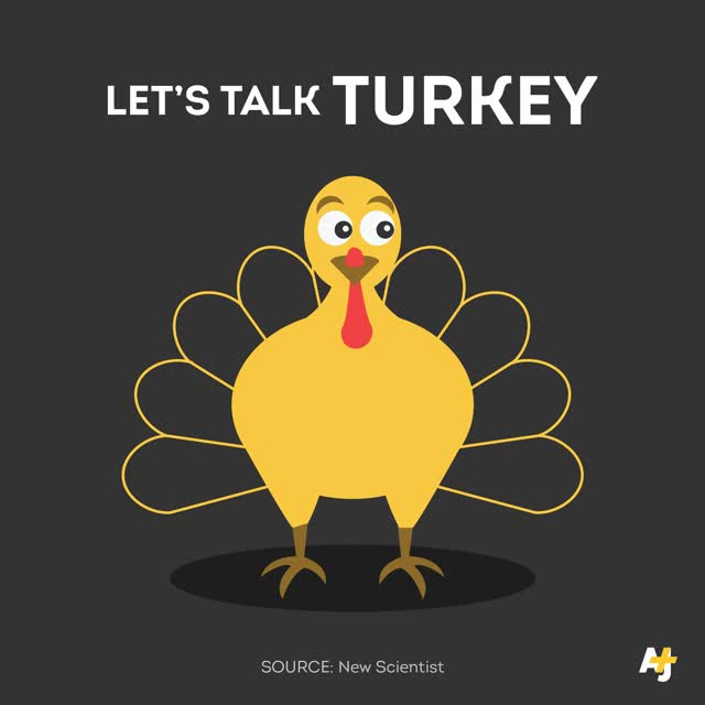 Watch and share Gobble GIFs on Gfycat