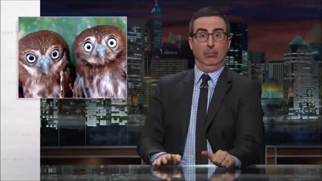 Watch this john oliver GIF on Gfycat. Discover more John Oliver, lastweektonight GIFs on Gfycat