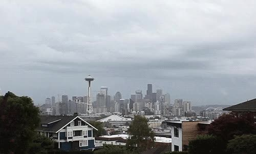 Watch and share Seattle GIFs on Gfycat