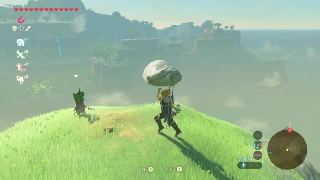 Watch this GIF on Gfycat. Discover more Breath_of_the_Wild GIFs on Gfycat