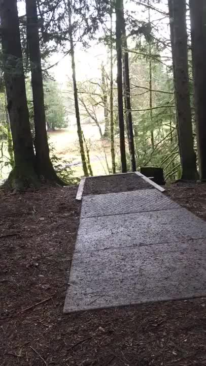 Watch and share Discgolf GIFs on Gfycat