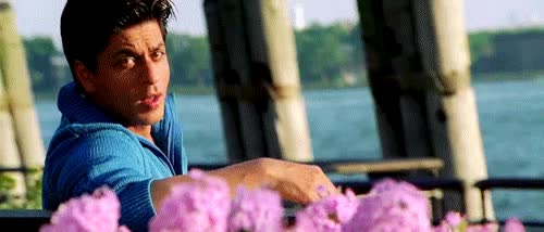 Watch Dharma Productions GIF on Gfycat. Discover more shah rukh khan GIFs on Gfycat