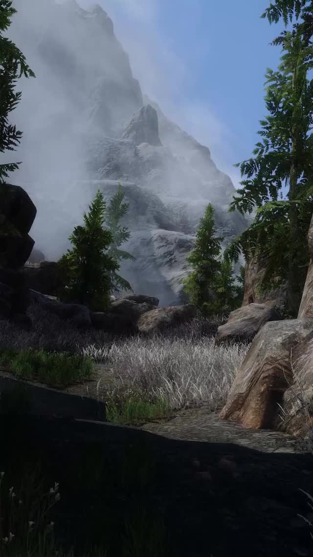 Watch and share Skyrim Special Edition 2020-03-22 12-40-19b GIFs by iricii on Gfycat