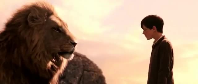 Watch Aslan forgives Edmund GIF on Gfycat. Discover more Liam Neeson, Narnia, aslan, books, funny, lion, movies, random GIFs on Gfycat