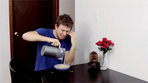 Corey Vidal, CoreyVidal, cereal, crying, milk, sad, Crying GIFs